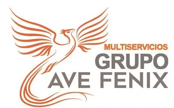 Multiservicios Ave Fenix - Patrocinador del Aspe UD